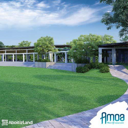 landscape lawn in amoa