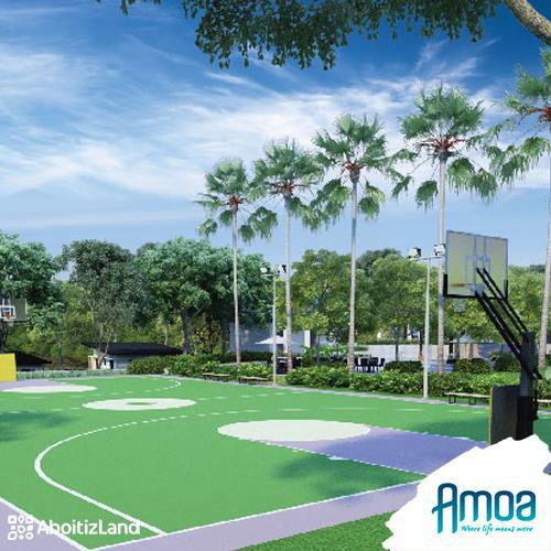 full basketball court
