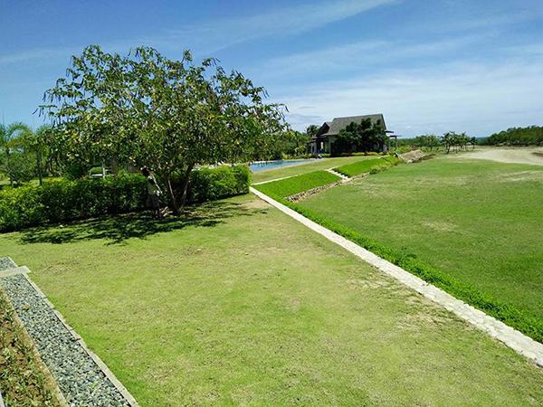 the landscape of the beach villas subdivision