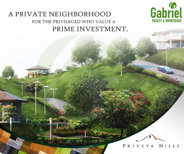 priveya hills cebu subdivision lot for sale in cebu city