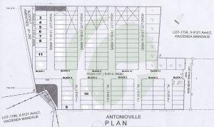 subdivision map of antonioville