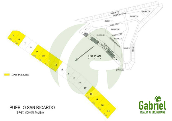 project development plan of san ricardo talisay