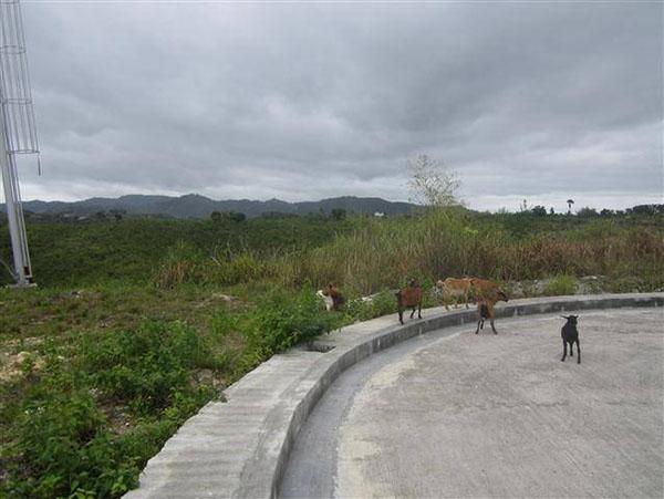 concrete road