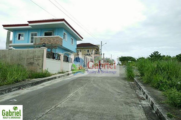 road and gutters in the subdivision