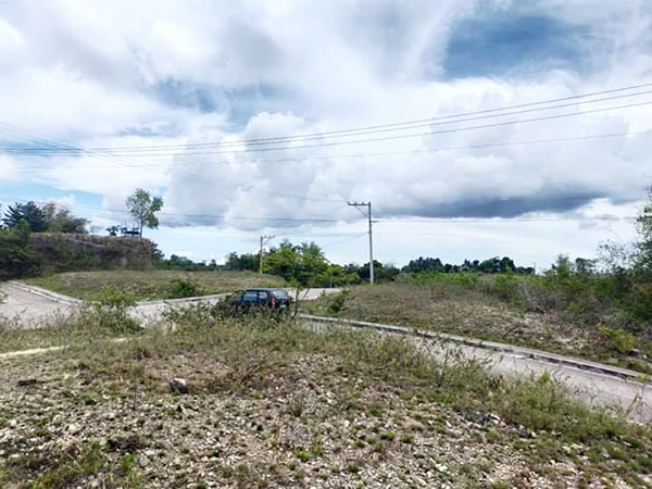 overlooking lot for sale in consolacion