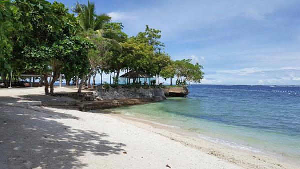tambuli seaside living mactan