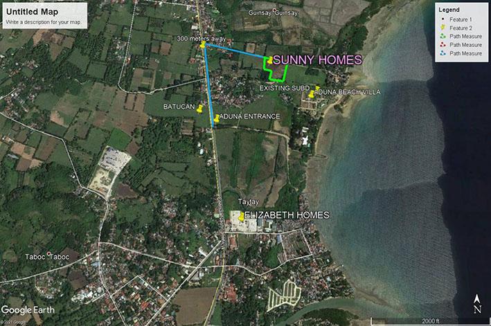 sunny homes danao vicinity map