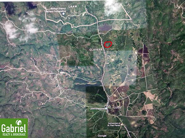 vicinity map of the farm lot for sale in borbon