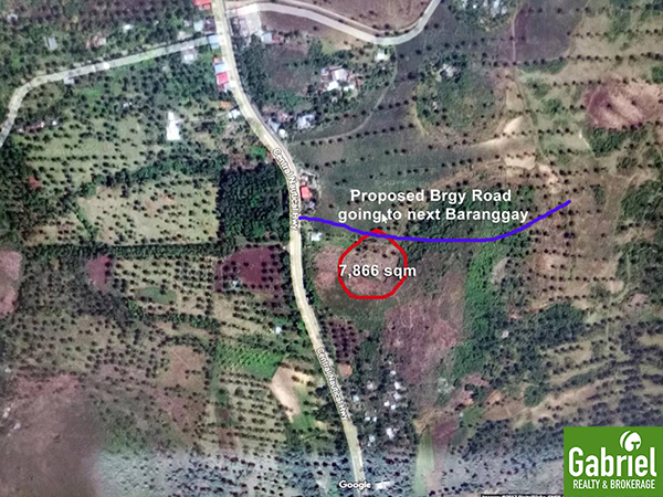residential lot for sale in borbon