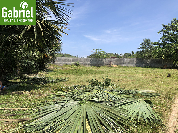 residential lot for sale in cebu